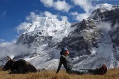 Trekker's Journal – On the trail in Kanchenjunga