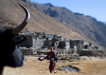 Humla Nyinba Valley Trek to Raling Gompa